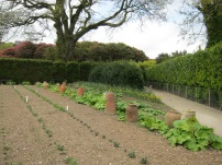 Kitchen gardens