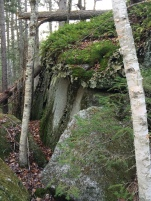 Big boulders left by glaciers and covered with lichens, moss, and ferns.