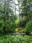 Asticou Azalea Gardens